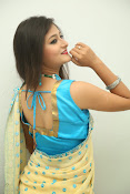 Nilofer sizzling saree photos-thumbnail-20