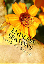 Endless Seasons - book cover
