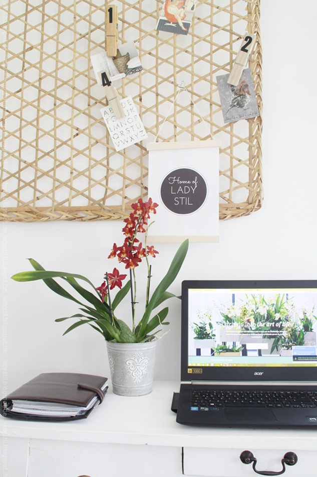 rote Orchidee im Officebereich mit Bambuspinnwand und Computer