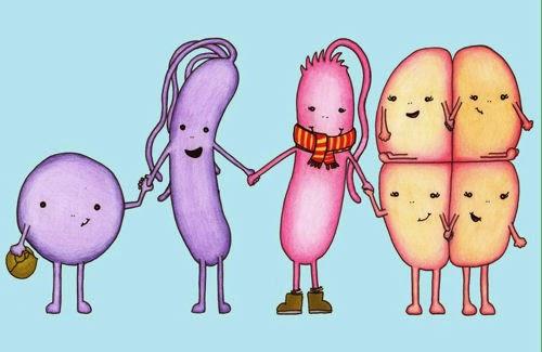 Microbe Family