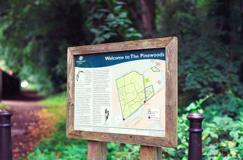 Pinewoods sign