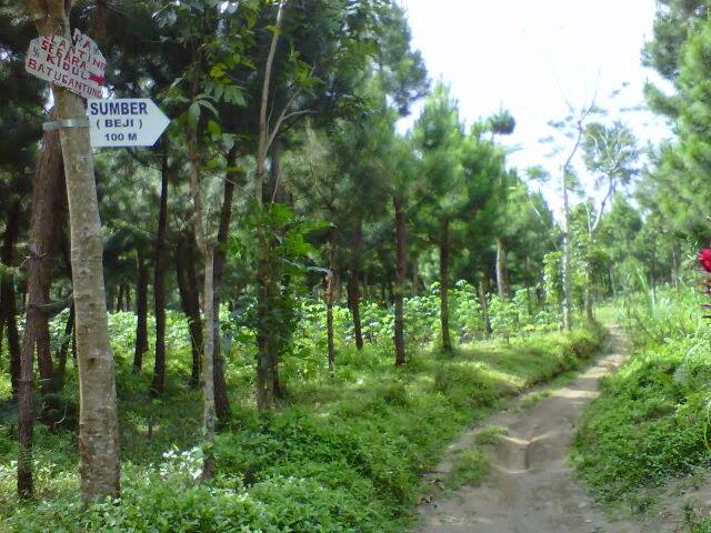 Jalan menuju mata air Sumber Beji, Candi Agung Gumuk Kancil