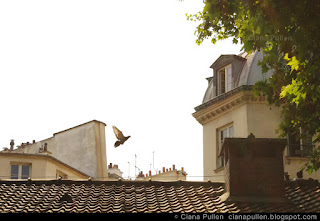 Paris Roofline by Ciana Pullen