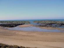Normandelière : Positionnement des récifs