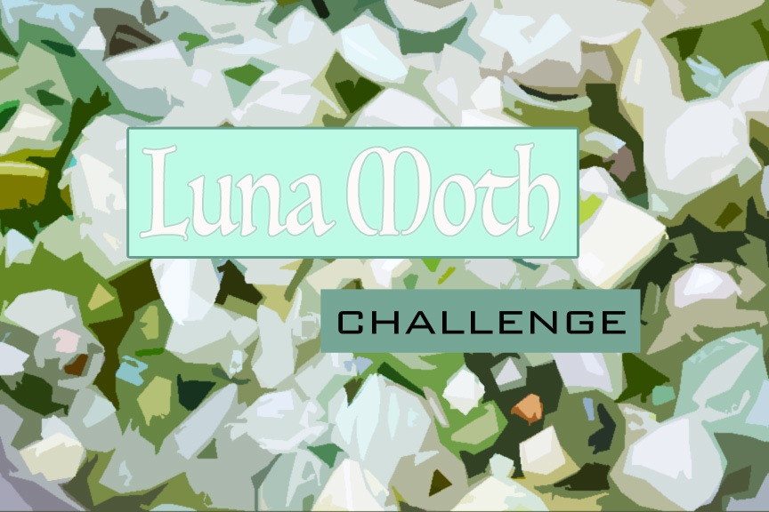 Allegory Gallery - Luna Moth Reveal