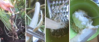 Zubereitung Meerrettichsahne, Meerrettichsahne selber machen