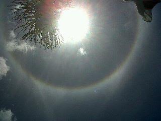 Matahari Cincin