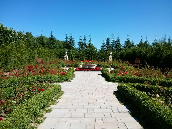 Angielski Ogród Czerwonych Róż