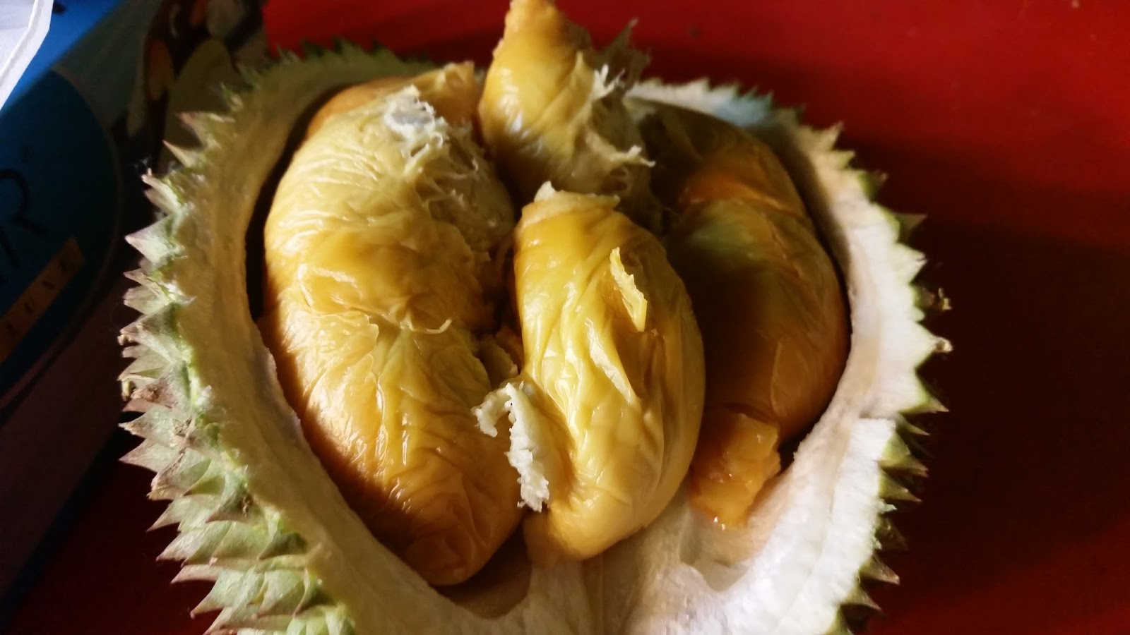 Food review durian culture jthejon for 19 teck chye terrace