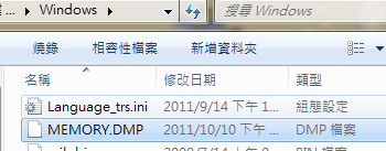 Memory.dmp 傾印檔案