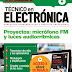 (Users) Técnico en Electrónica Proyectos: micrófono FM y luces audiorritmicas