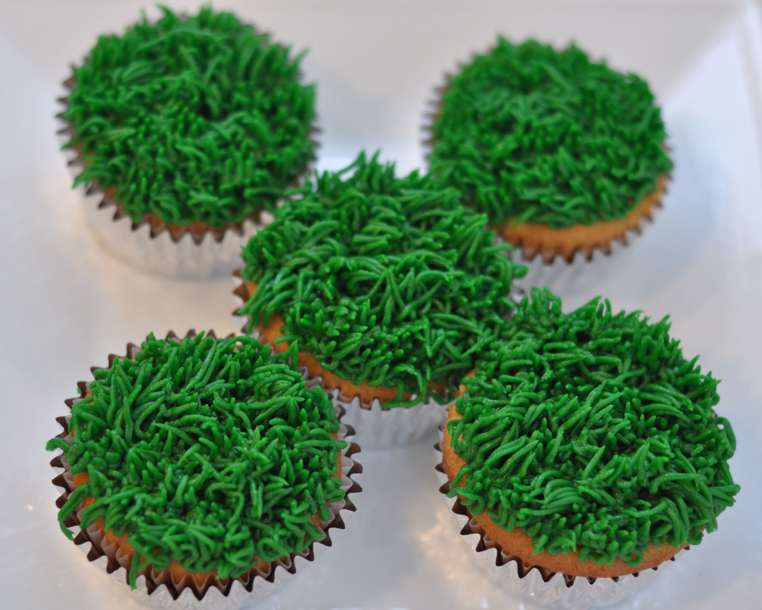 Cake Decorating Making Grass : Beki Cook s Cake Blog: Grass, Bees & Ladybugs Cupcakes