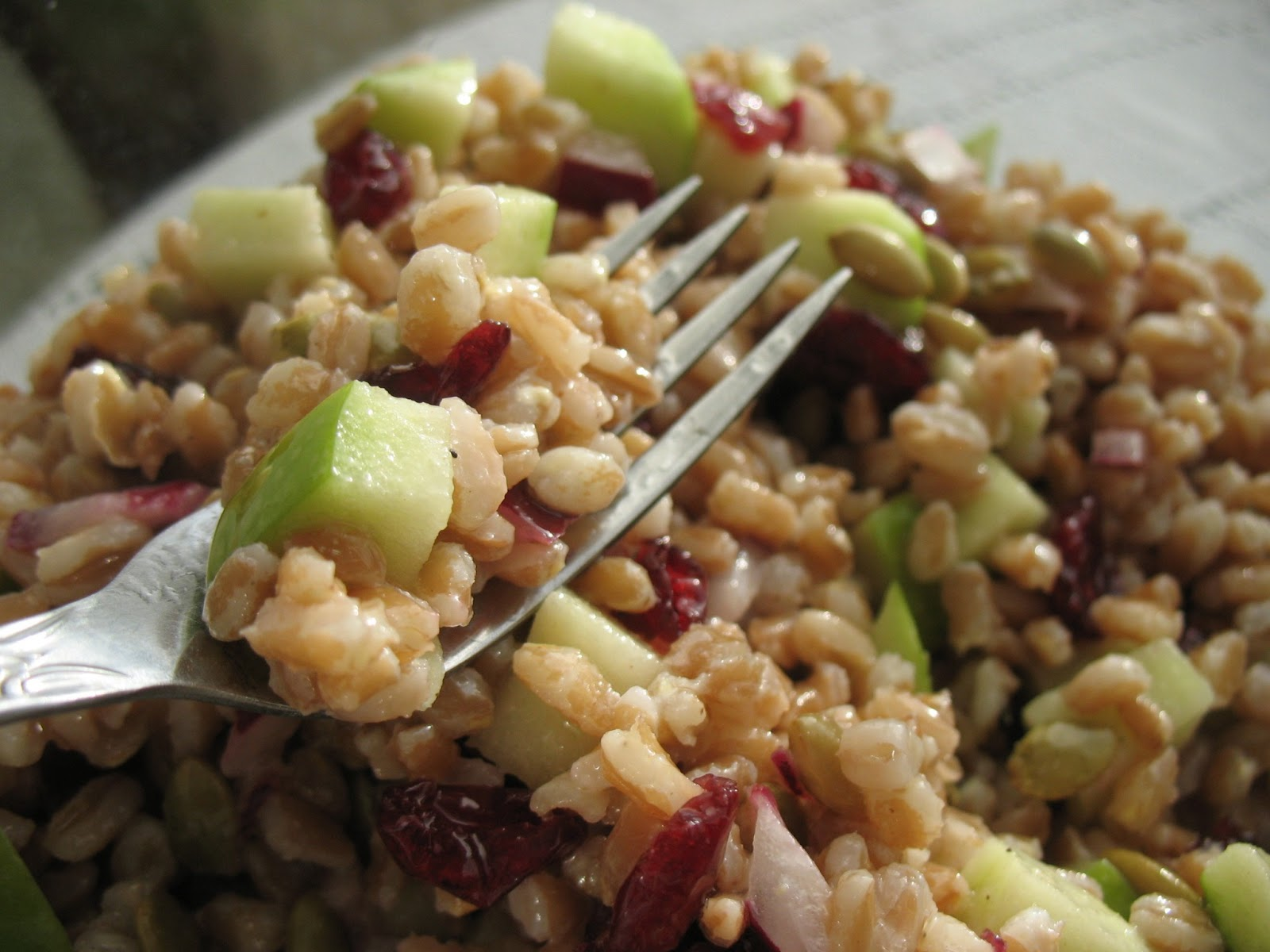 Farro+Salad+with+Apple+2.jpg