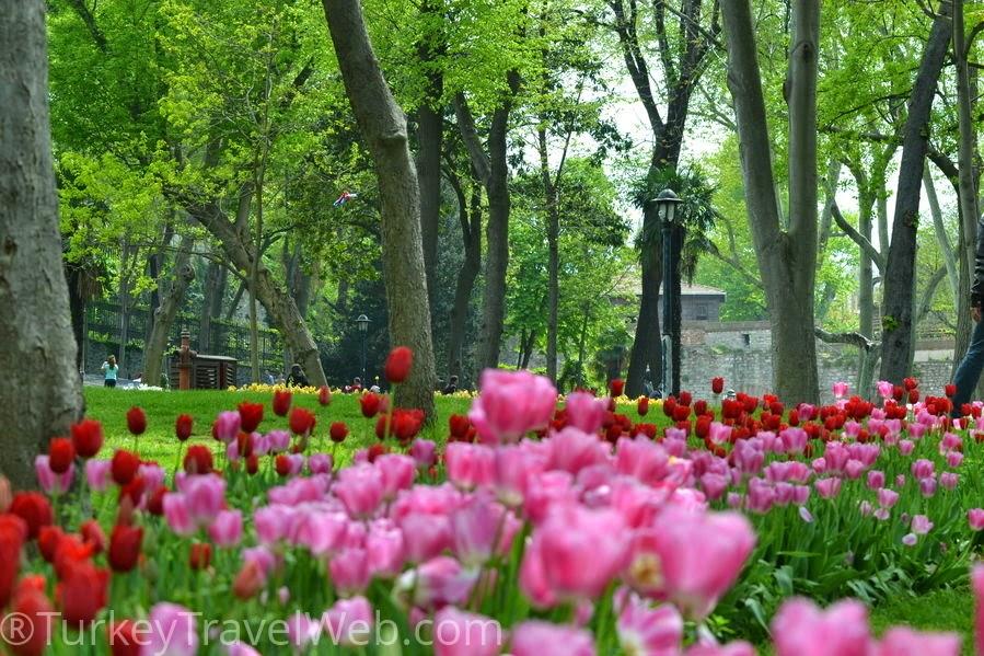 В Стамбуле весной