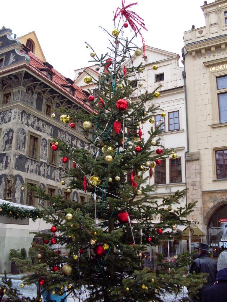 Praha Prague Christmas tree