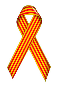 Català ara i sempre