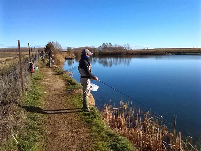 Bejarano pescando en lago