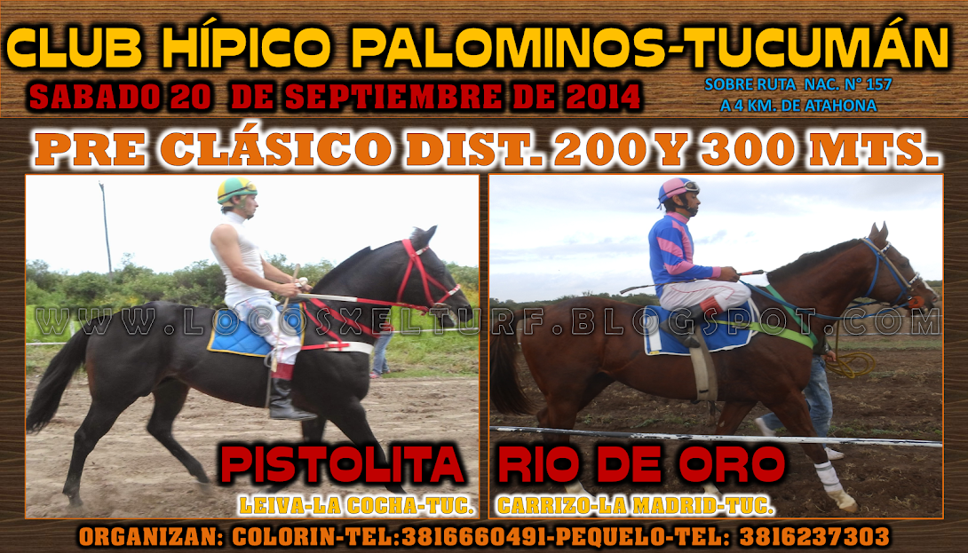 20-9-14-PRECLAS-1-HIP. PALOMI