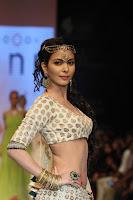 Bollywood, Hot, Actress, at, IIJW, Photos