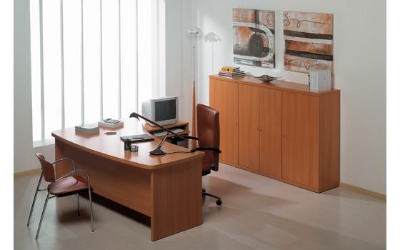 Servicios de carpinteria de metal y madera en tarapoto for Decoracion de oficinas ejecutivas