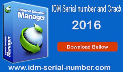 IDM 6.25 build 8 serial number crack