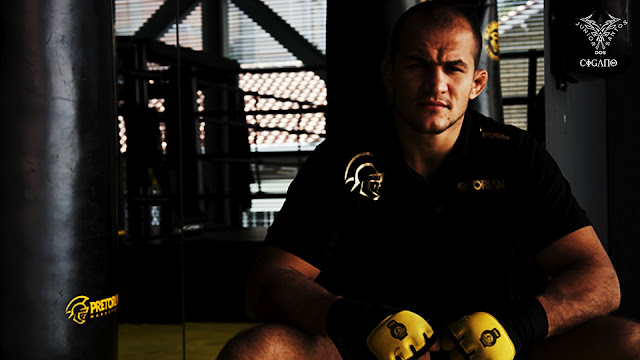 ufc mma heavyweight champion junior dos santos wallpaper image picture