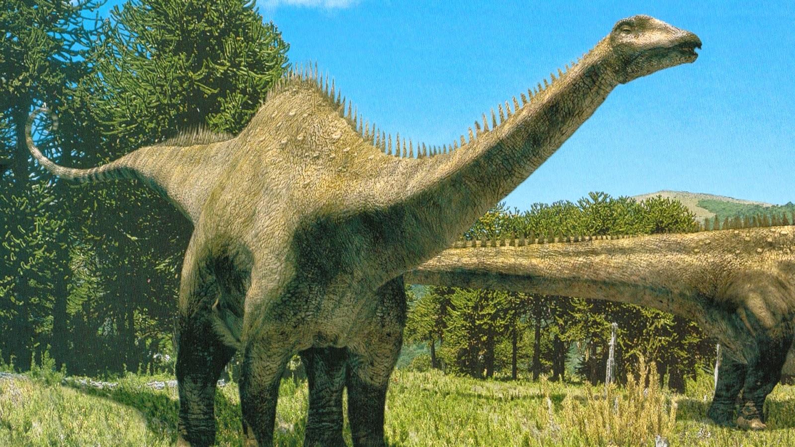 Il Diplodocus è vissuto nel Giurassico superiore Stati Uniti