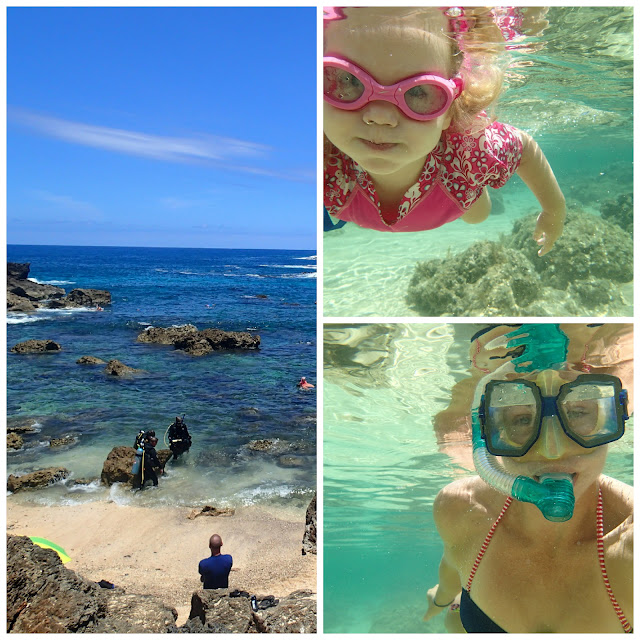 sharkbay - My top 6 things to do with kids in Hawaii