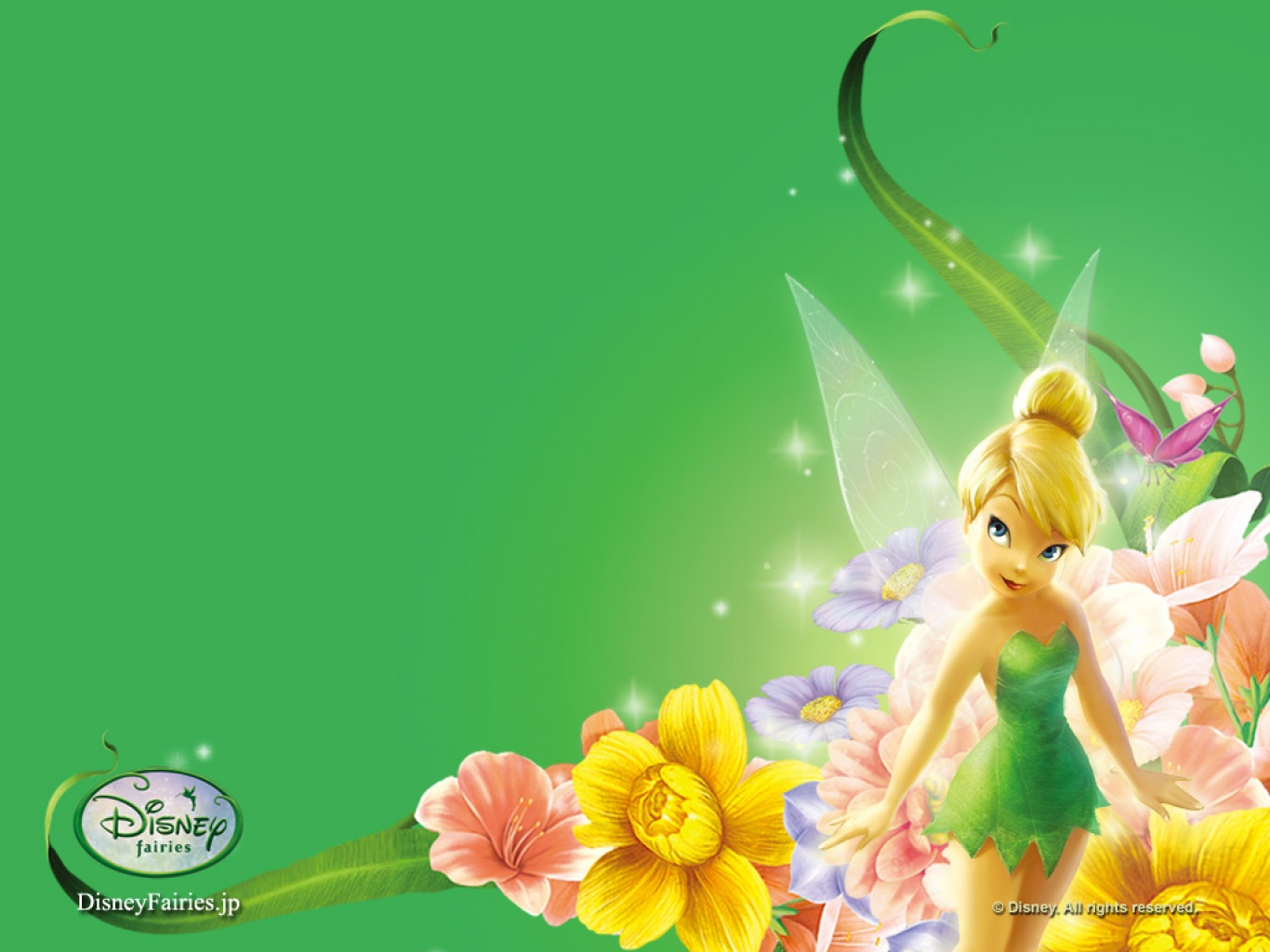 Wallpaper Free Download Tinkerbell Green Background