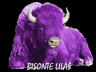 Bisonte Lilás