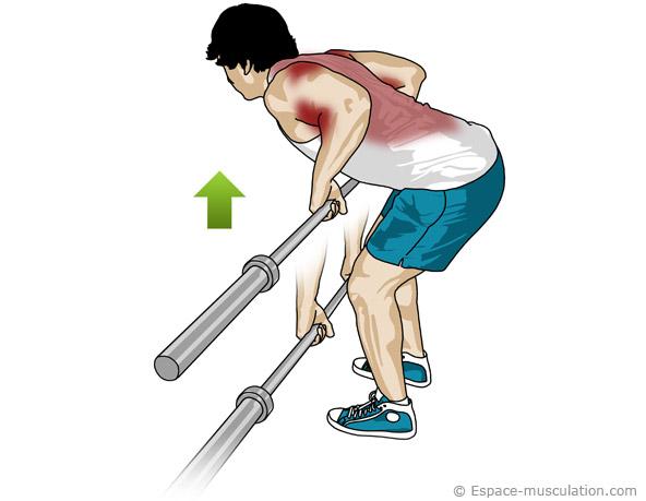 Bien être by Laeti Boop: Les exercices pour se muscler le dos