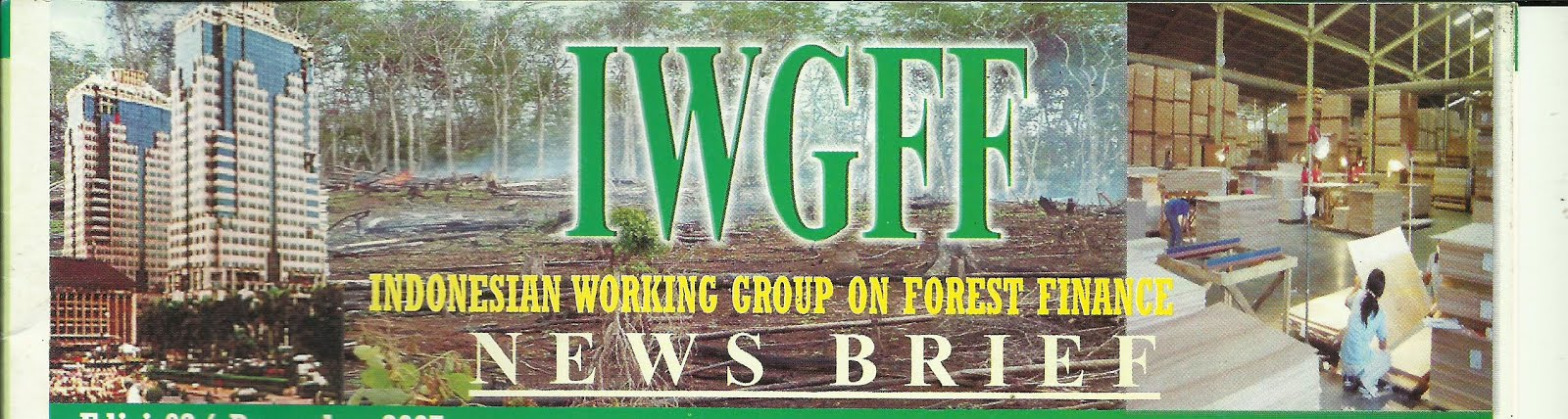 IWGFF Indonesian Working Group on Forest Finance