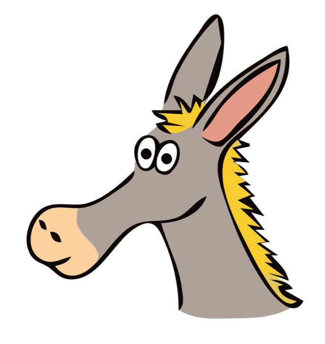 Picture of a funny donkey