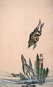 La grenouille de Bashō/ 芭蕉のカエル