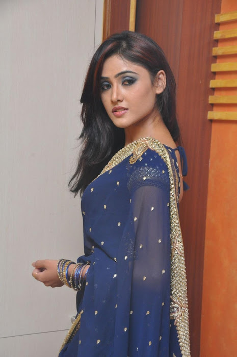 sony charista in saree cute stills