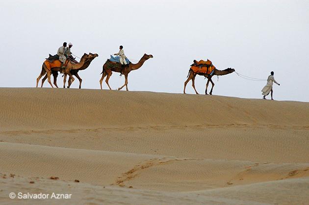 http://www.diariosdeunfotografodeviajes.com/2015/02/en-el-desierto-del-thar.html