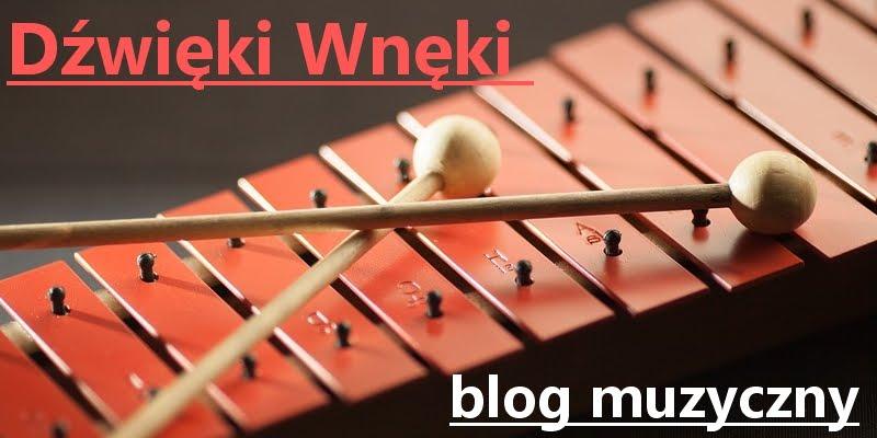 DŹWIĘKI WNĘKI - blog muzyczny