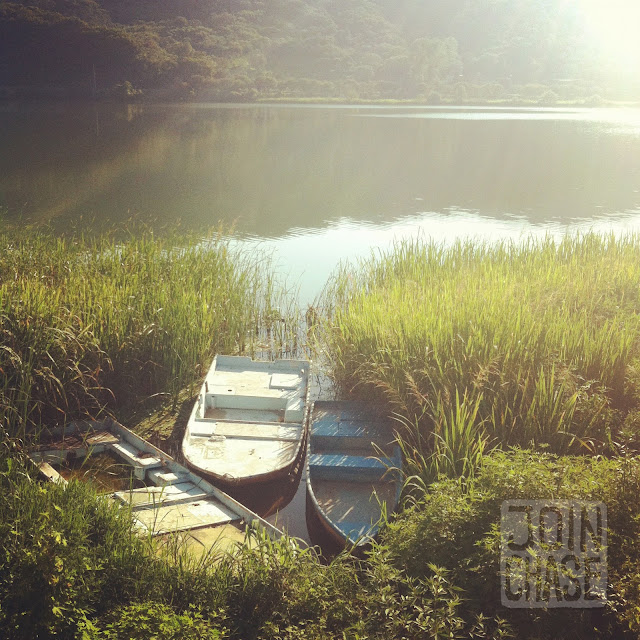 Three abandoned boats in weeds along the Han River in South Korea.