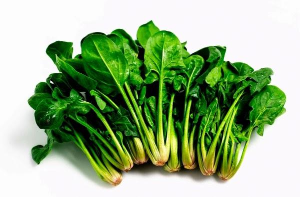 Receitas de espinafre. Como preparar espinafre