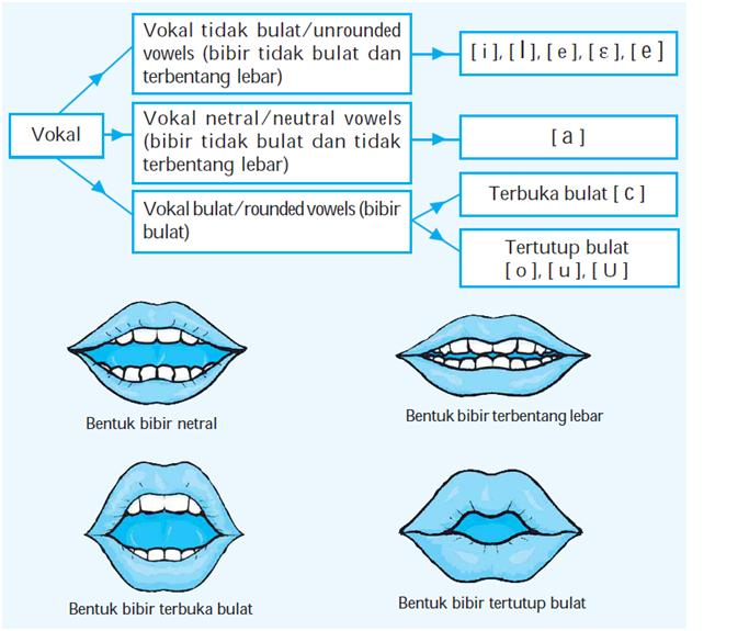 Fonem Bahasa Indonesia Dialog Bahasa Inggris Pelayanan Kb 4 Orang