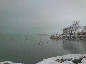Bizim Kış...
