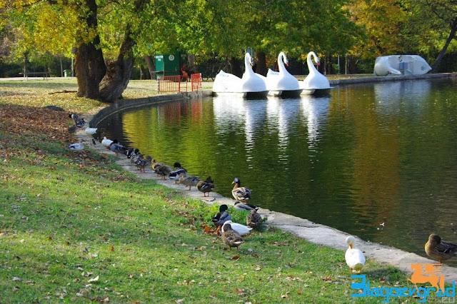Парк Бачиново