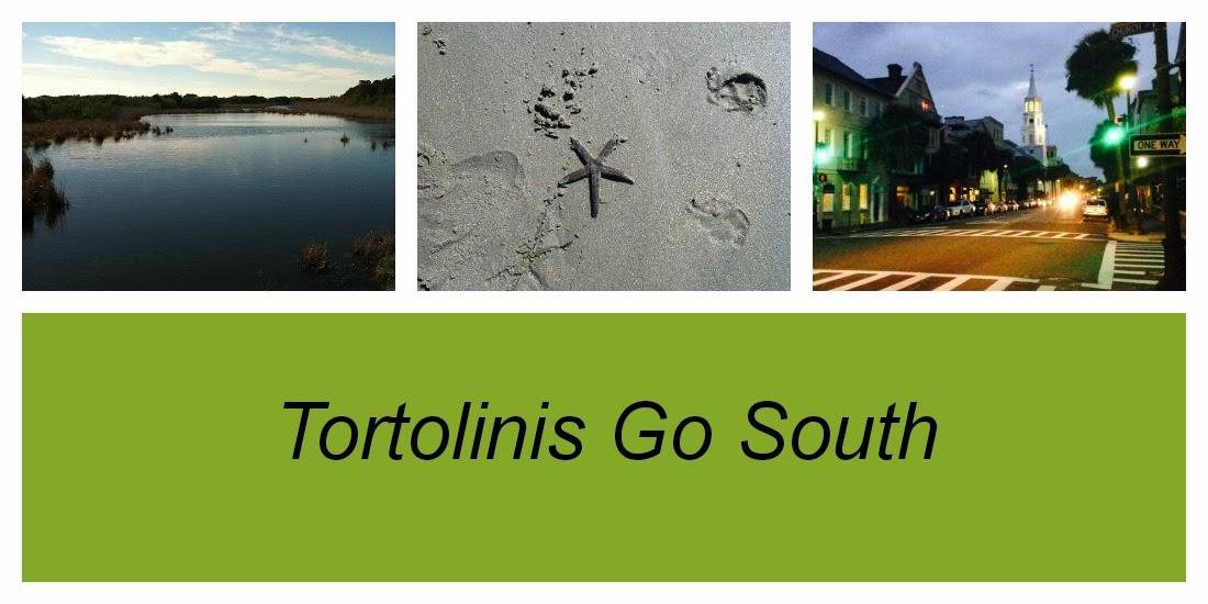 tortolinis go south