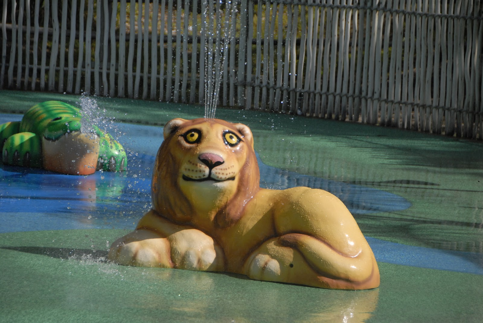 lion water statue at animal safari park