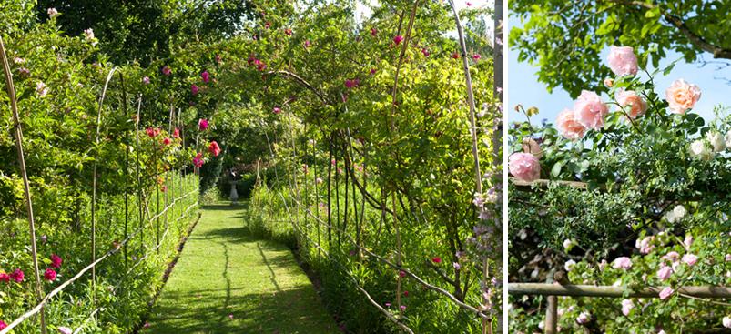 Archives sujets photos - Se marier dans son jardin ...