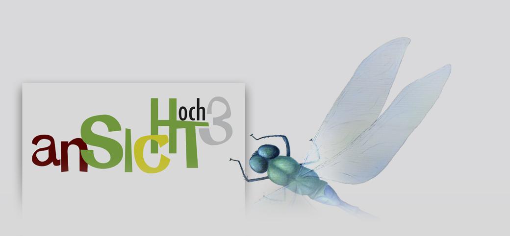 anSICHThoch3