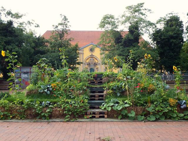 osnabrück,osnabrueck,marktplatz,popupgarten,urbangardening,wirsindimgarten,schloss