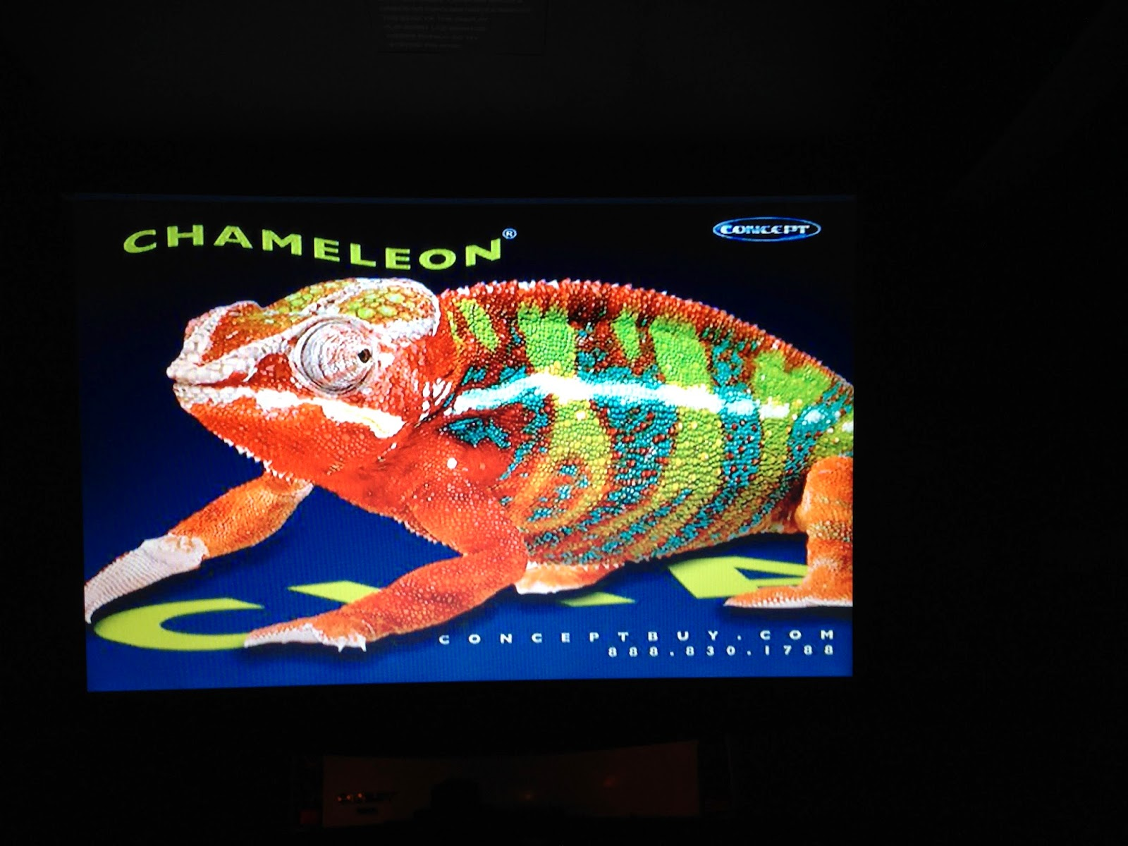 0FB49 Chameleon Dvd Player Wiring Diagram | Wiring LibraryWiring Library