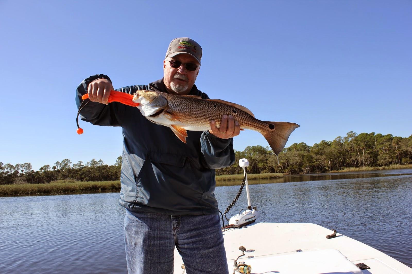 Fishing report greater daytona beach florida for Daytona beach fishing