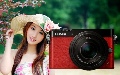 Panasonic Lumix DMC-GM5, New Panasonic Lumix camera, Full HD video, Micro Four Third system, creative filter, venus engine